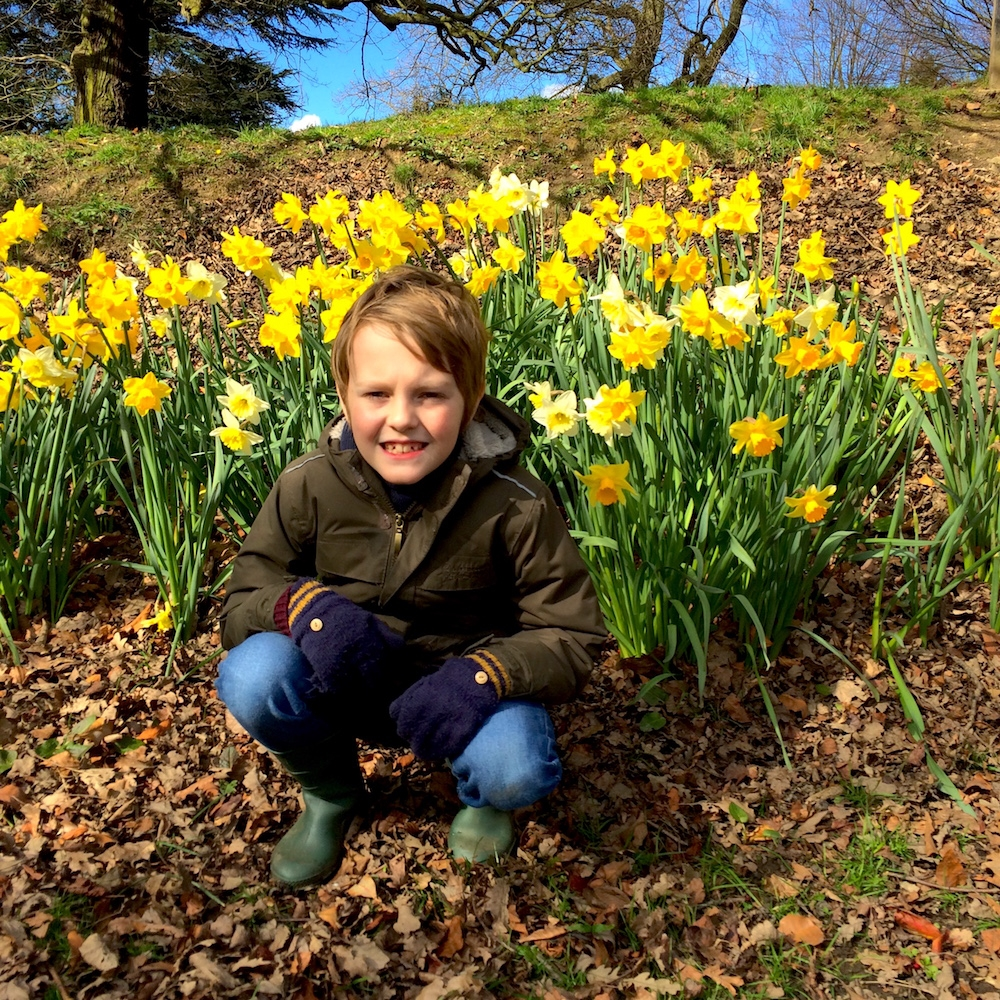 Yorkshire Sculpture Park: my nephew, George crouching in front of the daffodils
