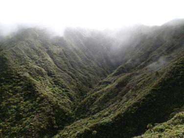 Misty Koʻolau Mountains
