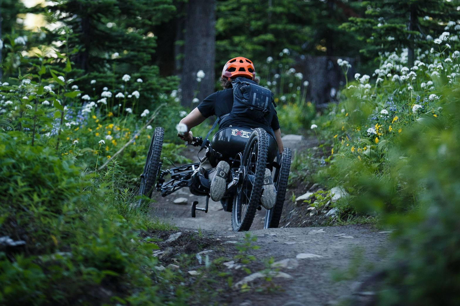 Adaptive Mountain Biker cruising through wildflowers at sun peaks bike park