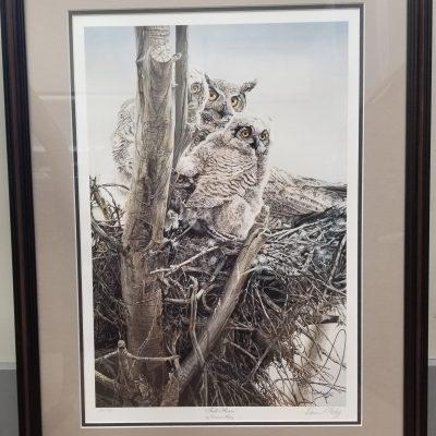 Full House framed print by Darren Haley