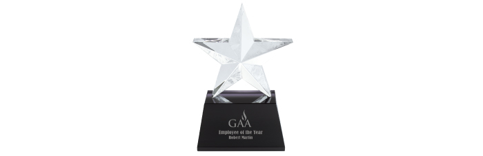36907-Iceberg-Star-Award