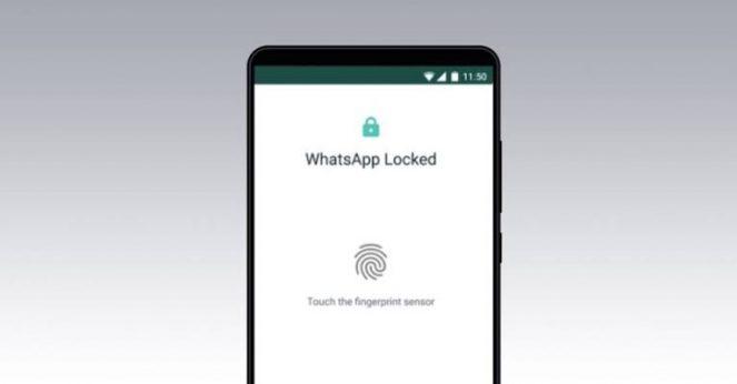 menggunakan sidik jari whatsapp