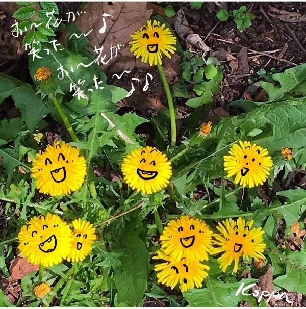 お花が笑った!