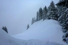 Auf dem verschneiten Waldgrat zwischen Pürschling und Teufelstättkopf