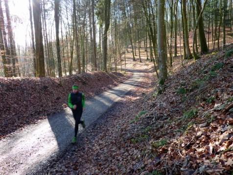 Anstieg durch die lichten Laubwälder des Naturpark Ausgburg Westliche Wälder