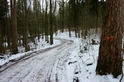 Abstieg ins Anhauser Tal