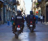 В Париже из-за нашествия блох закрыли полицейский участок