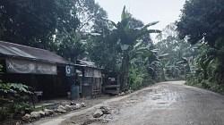 Jalan Muara Pitap di Balangan becek. (foto: ramli)