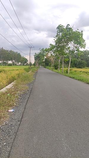 Jalan ini bila malam hari tanpa PJU dan gelap. (foto: faqih)