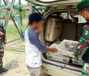 Anggota TNI Perbatasan Malaysia Gagalkan Penyelundupan Ratusan Burung Kacer