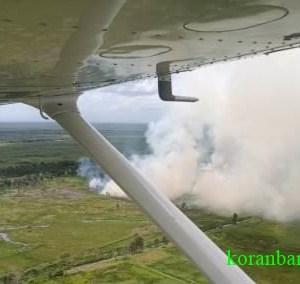 Karhutla Kalsel di Desa Sampurna Kabupaten Batola Terjadi Sejak Kemarin