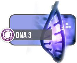dna-3