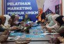 Baiq Diyah Latih Pengusaha UMKM tentang e-Commerce
