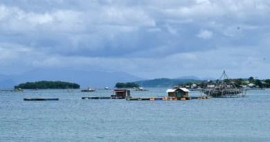 Geliat Budidaya Lobster dan Rumput Laut di NTB