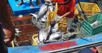 DKP NTB Dilibatkan dalam Merancang PMK Pengelolaan Hasil Laut