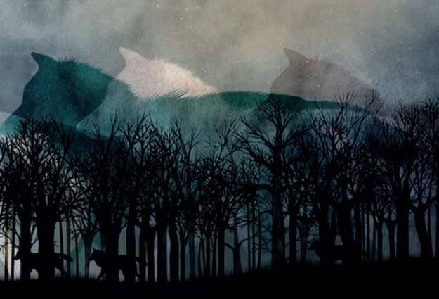 La novia del lobo - Ilustración de lobos por Sara Morante