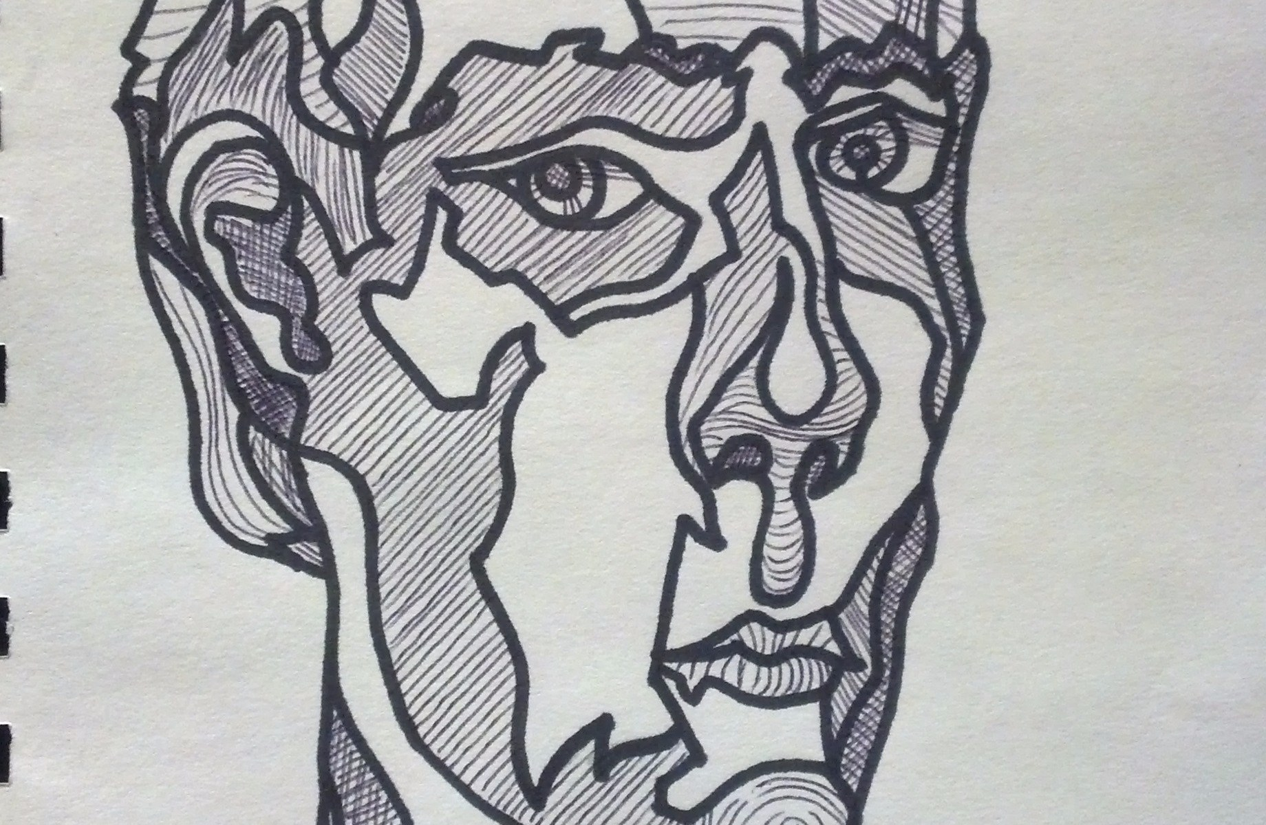 continuous line contour drawing