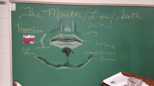 Mouth and Chin
