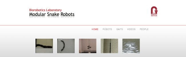 snakerobot.png