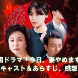 韓国ドラマ『今日、妻やめます~偽りの家族』のキャスト・あらすじ・感想まとめ