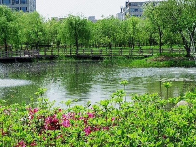 Hanbat Arboretum: Where Nature and People Come Together