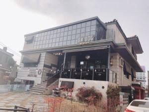 DA DOG in the city外観