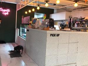 Dogentle Cafe②