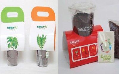 Seedling Starter Kit
