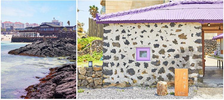 Delmoondo & Bora Roof