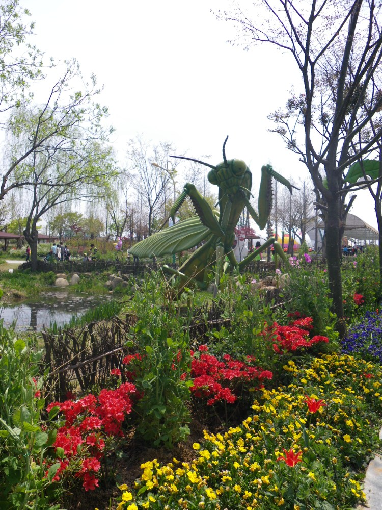Mt.Gangcheon Hiking and the Hampyeong Butterfly Festival (6/6)