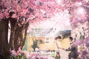 koreanpreweddingphotography_OGL028-2-2