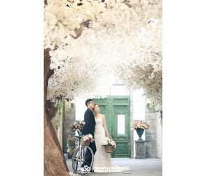 Koreanpreweddingphotography_Eugene_Clarice2