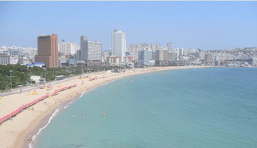Busan Beaches Korean Life 101