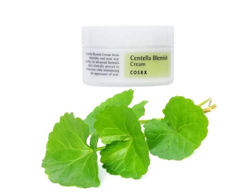 korean centella asiatica skincare products cica creams cosrx best cosrx products best korean acne products acne skincare tips best ingredients for acne