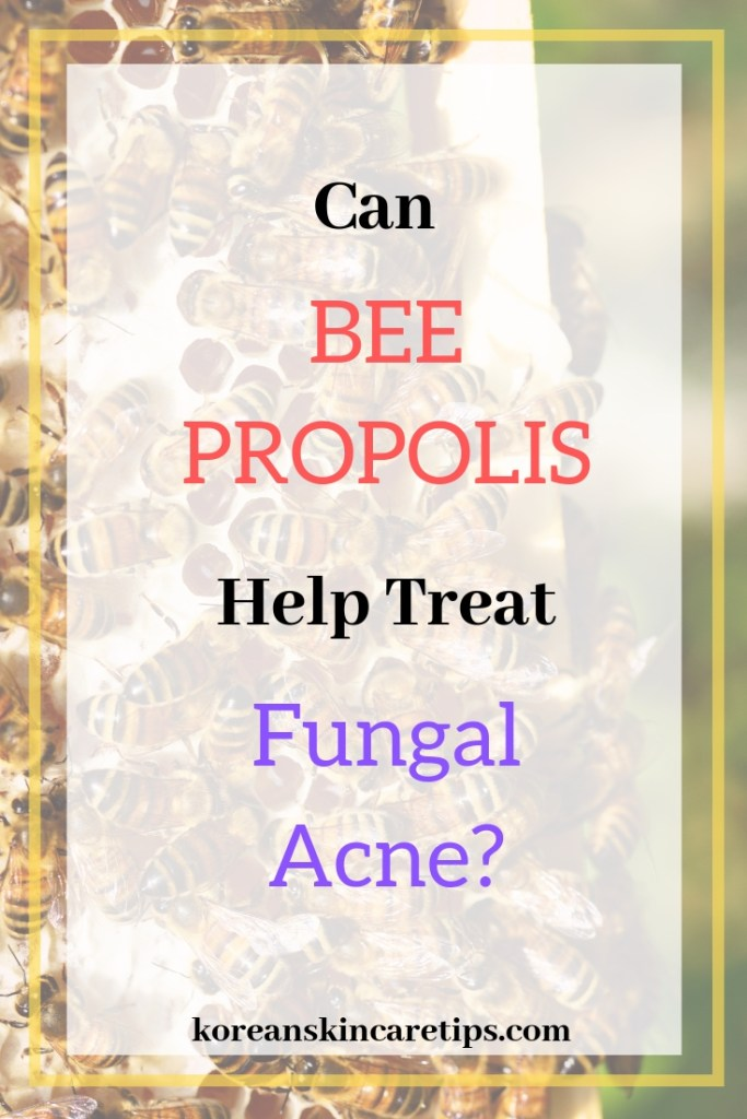 bee propolis skin benefits fungal acne korean skincare products with propolis