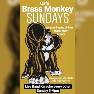 Cafe Brass Monkey Karaoke