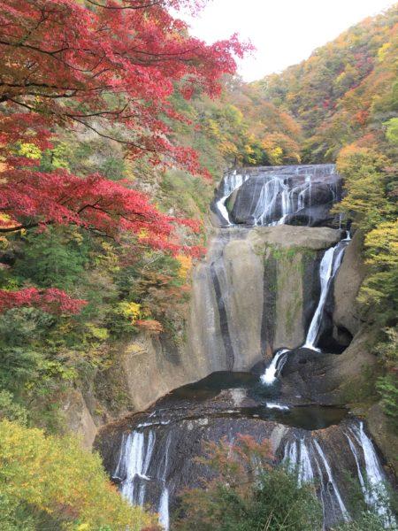 袋田の滝 紅葉11月
