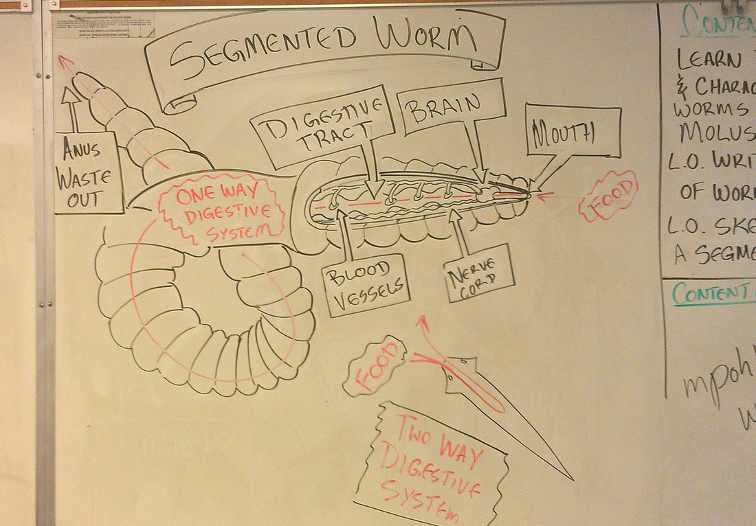 hight resolution of physical science projects