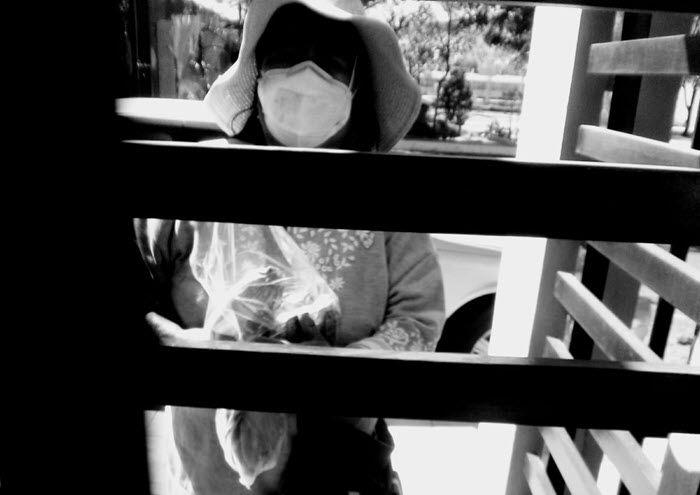 La señora de los nomales - Marcela Lopez