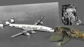 Червоточины, прыжки во времени и таинственный рейс 513 в Сантьяго.