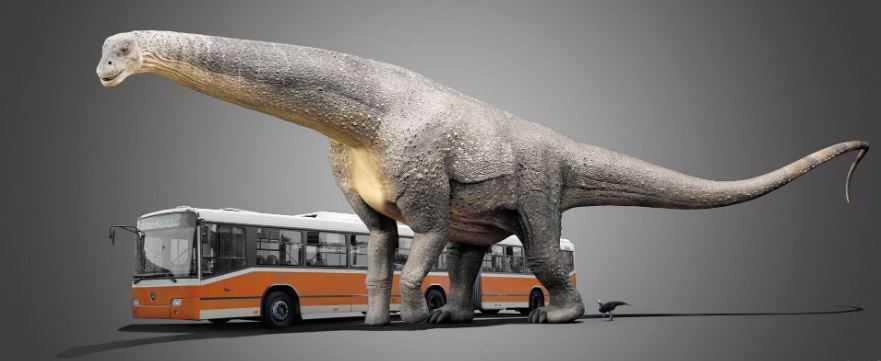 Патаготитан (Patagotitan mayorum) - самый большой (из существовавших) динозавр.