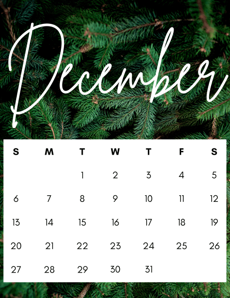 gorgeous pine tree december 2020 calendar