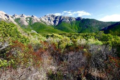 mountain_largentella