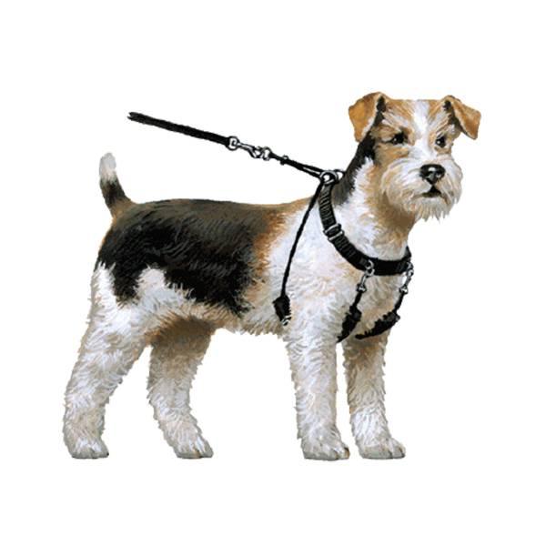 Yuppie Puppy Anti Trektuigen 35 09 Korting Kortingdeals
