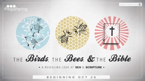 Birds_Bees_Bible-1280-STRTDT