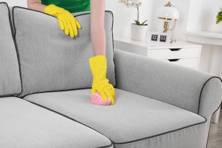 Cara menghilangkan bau jika kucing Anda menandai sofa