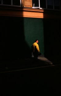 sunshine_yellow_web