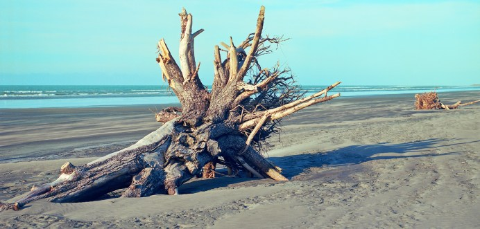 Carters Beach, Westport_Kodak Ektar 100