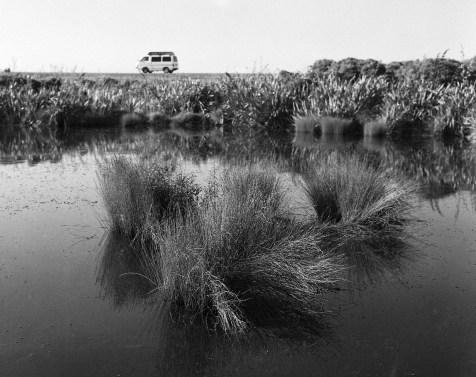 Cobden Lagoon Walk_Rollei Retro 100