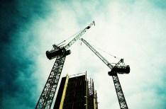 cranes_web